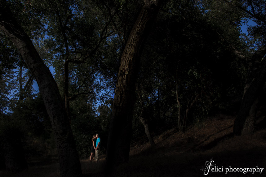 Forest engagement session in San Diego
