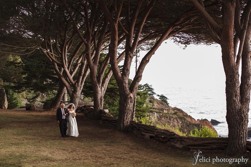 Wedding Amy Amp Greg Paion Estate Big Sur Ca